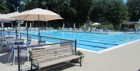 Swim Lessons Activities Mosby Woods Pool